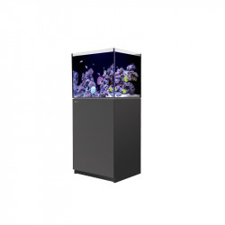 Red Sea Reefer 170