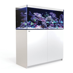 Red Sea Reefer 350