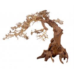 Bonsai Wood L 01